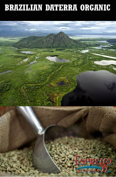 Green Coffee Beans - Brazilian Daterra Organic 2lb Bag