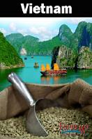 Green Beans Vietnam Robusta GR1 Wet Polished SCREEN 18 2lb Bag